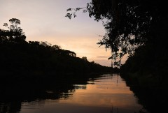 Rio-Negro