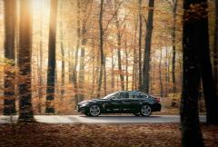 BMW-autumn-forest