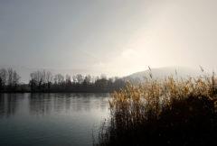 Savoie-Morning-fog-